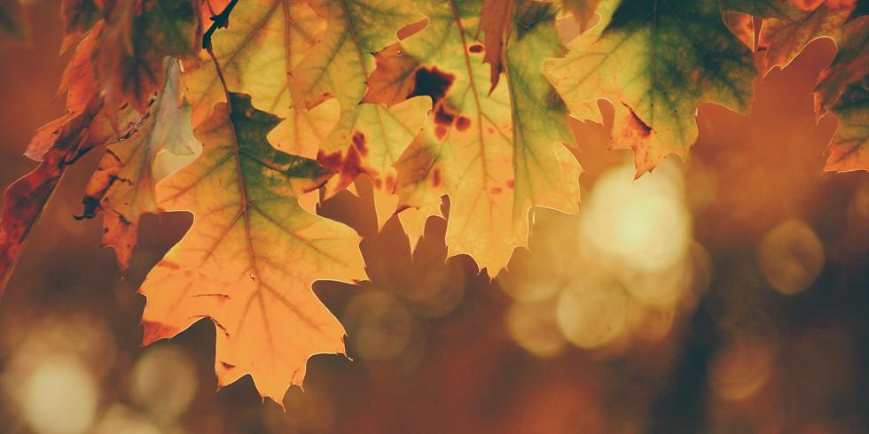 Autumn Tones Concert