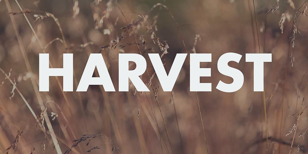Harvest Gift Day