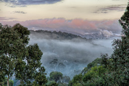 Ims, Brian - Misty Morning from Pound Rd.jpg