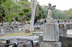 Sandra Miller - History set in stone.jpg