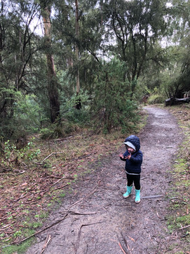 Willoughby, M - Nature Play2.jpg