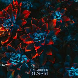 BLSSM