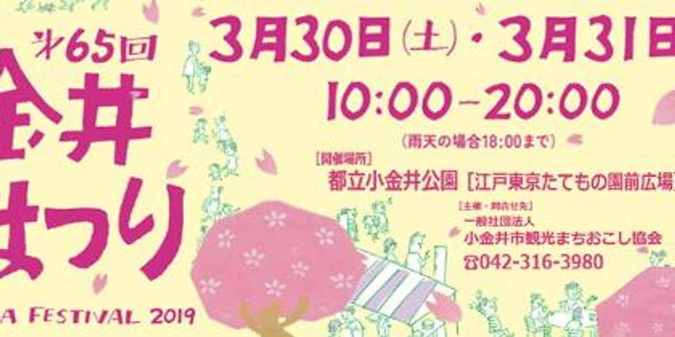 小金井桜まつり2019