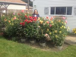 Joanne Motta's Garden