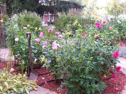 Kevin Maloney Garden