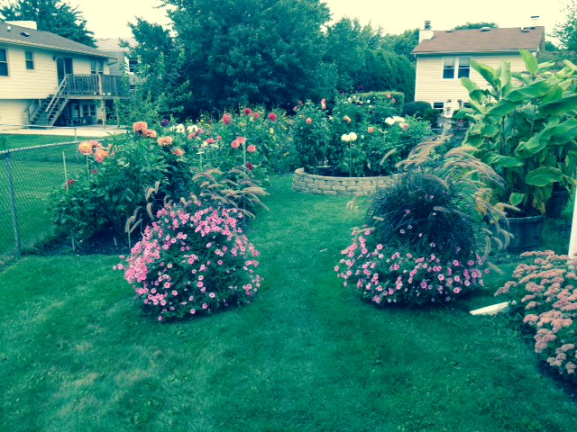 Jim Kassner garden