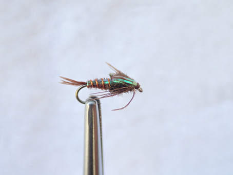 Four Flies for the Truckee Area this Spring