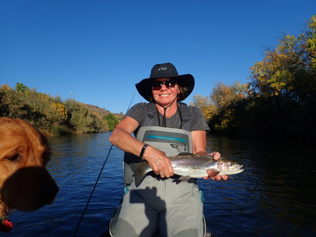 Truckee-Tahoe Fly Fishing Report (Steelhead edition) October 21st, 2020