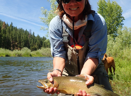 Truckee Tahoe Fly Fishing Report July 1st, 2020