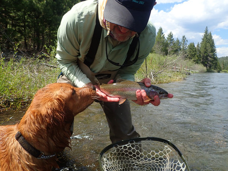 Truckee Tahoe Fly Fishing Report June 10th, 2021