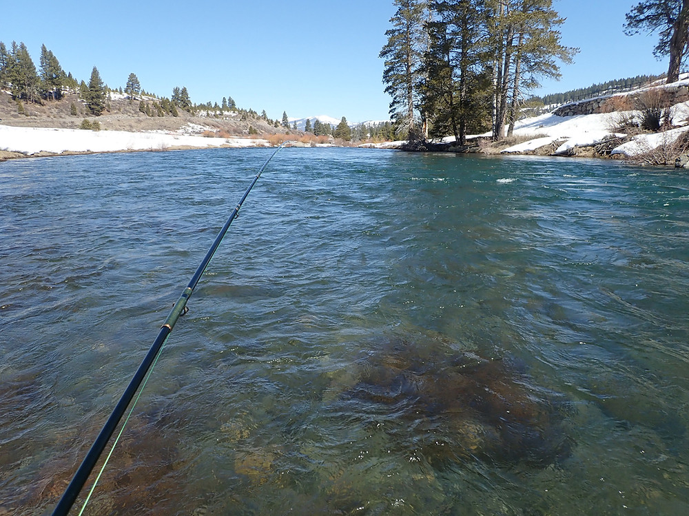 Fishing on Truckee River