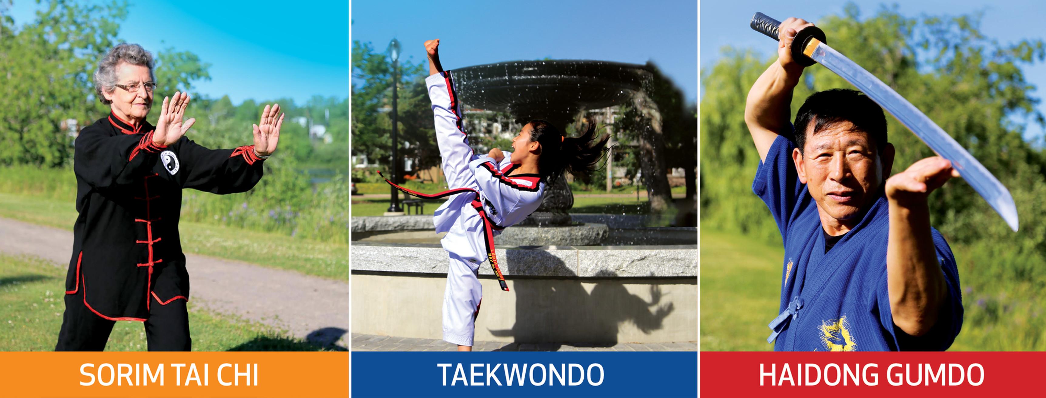 Chung Won Institute of Taekwondo