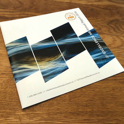 Excellence NB   Annual Report Design