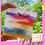 Thumbnail: Art Major Body Bar 😻Yoni Safe