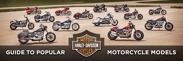 eaglerider_motorcycle_rentals_tours_fami