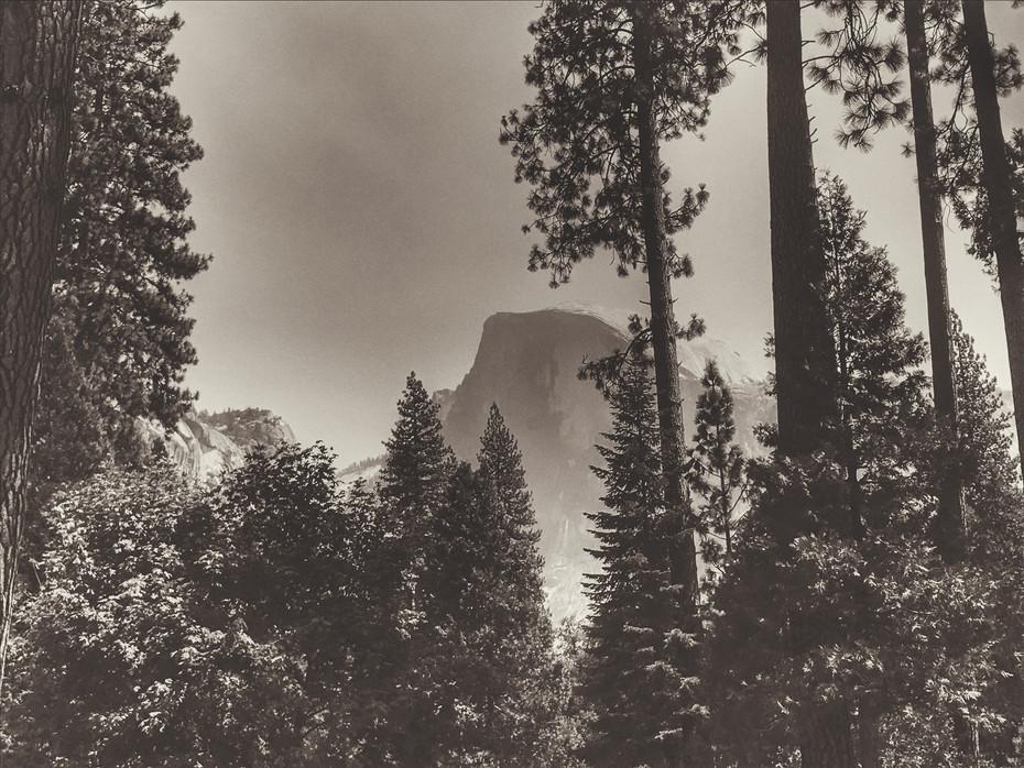 Half Dome-Drake Taylor.jpg