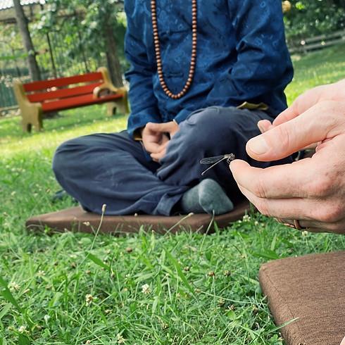 Garden Meditation & August Gathering