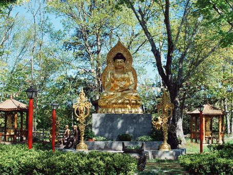 Healing with Jinyin Temple, Healing with Bhaiṣajyaguru