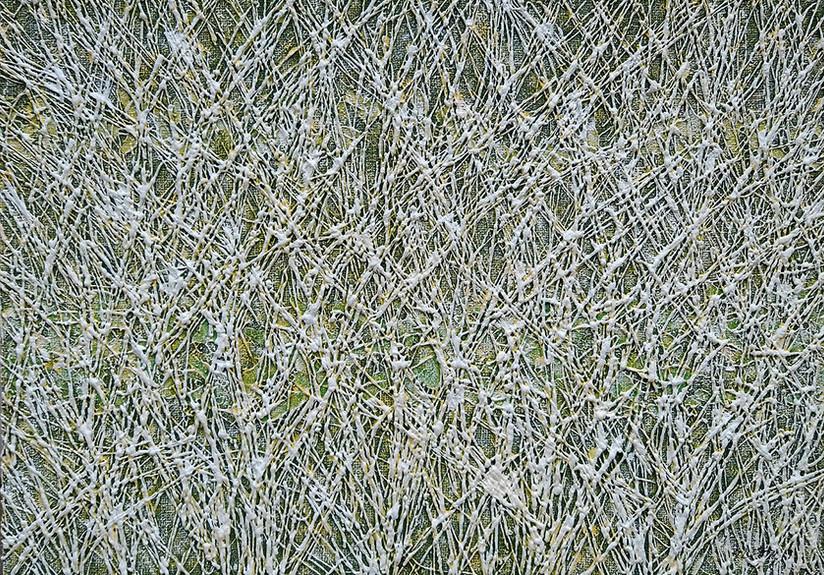 인영-숲,캔버스에 혼합 된 MEDEA, 65.1 x 90.9 cm.