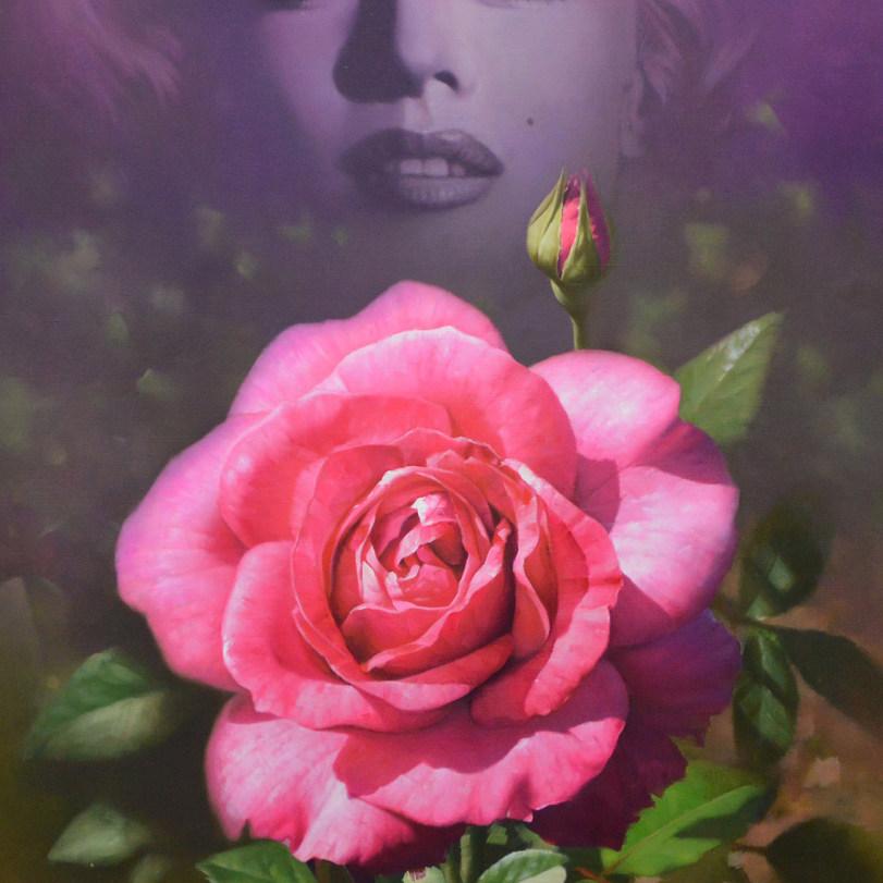 오재천, 불꽃처럼, 60x 60cm, oil on canvas, 2016.