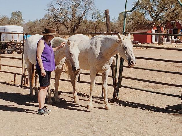 HorseSpeak Photo.jpeg