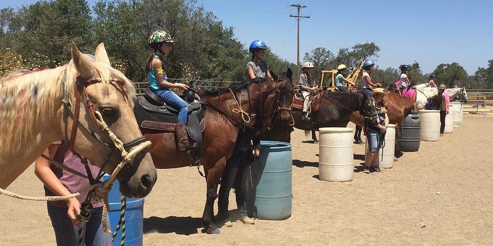 Horse Camp ages 10-13 Girls and Boys