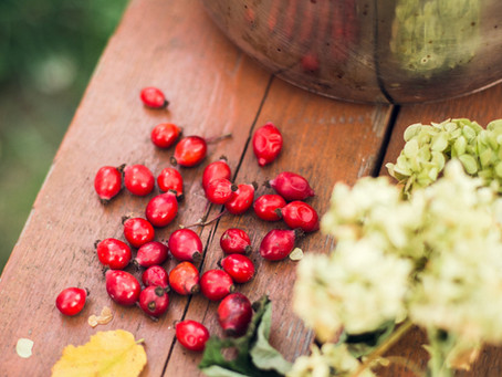 Rose Hip Oil – A favorite even among celebrities …
