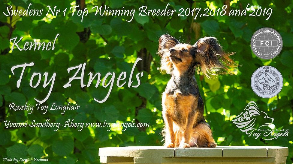 Toy Angels 2019.jpg