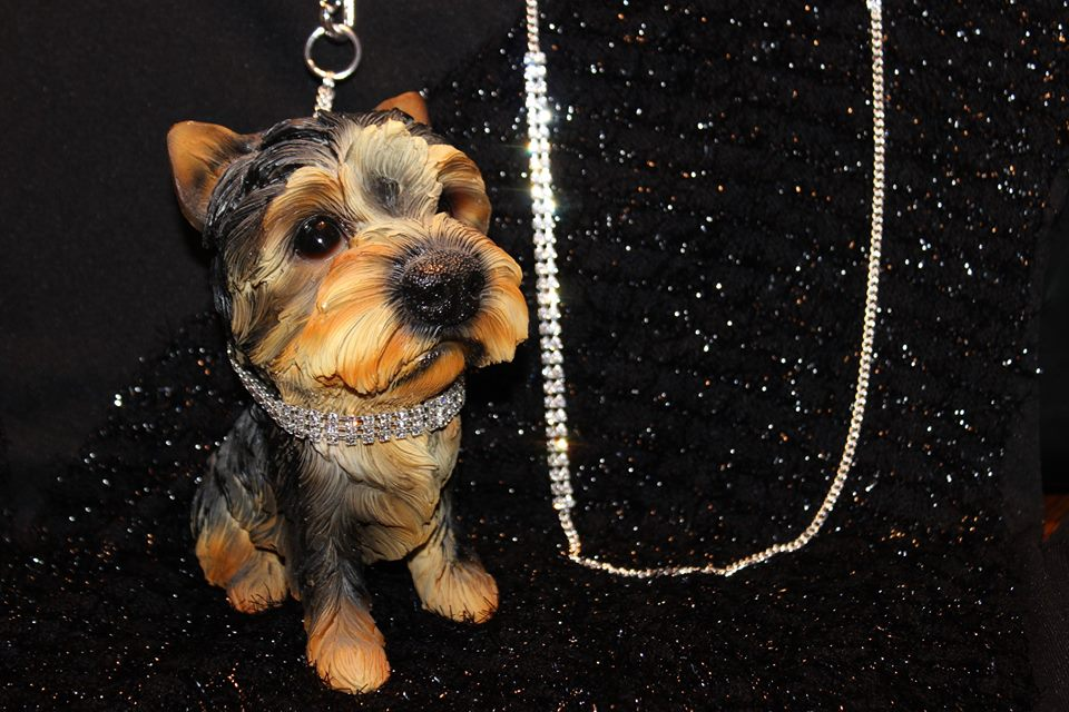 Strass collars and leash