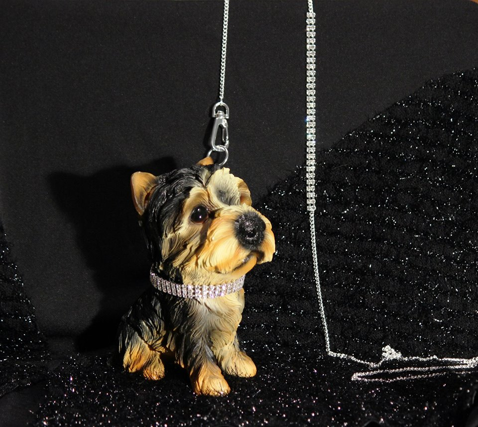 Strass collar and leash