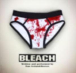 bleach audio cover2.jpg