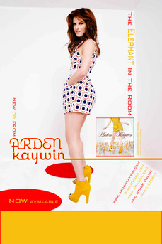 Musical Artist Promotional Poster