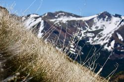 La Plata Ascent, Colorado