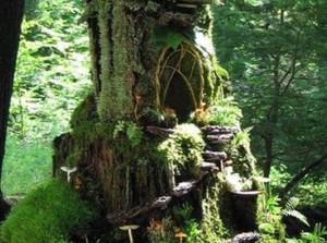 The Backyard Fairy