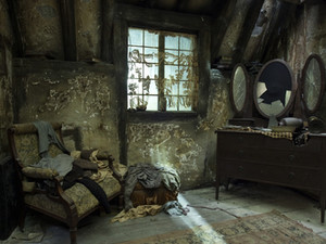 The Forgotten Tale of Harry Potter's Sister: Bathilda Bagshot