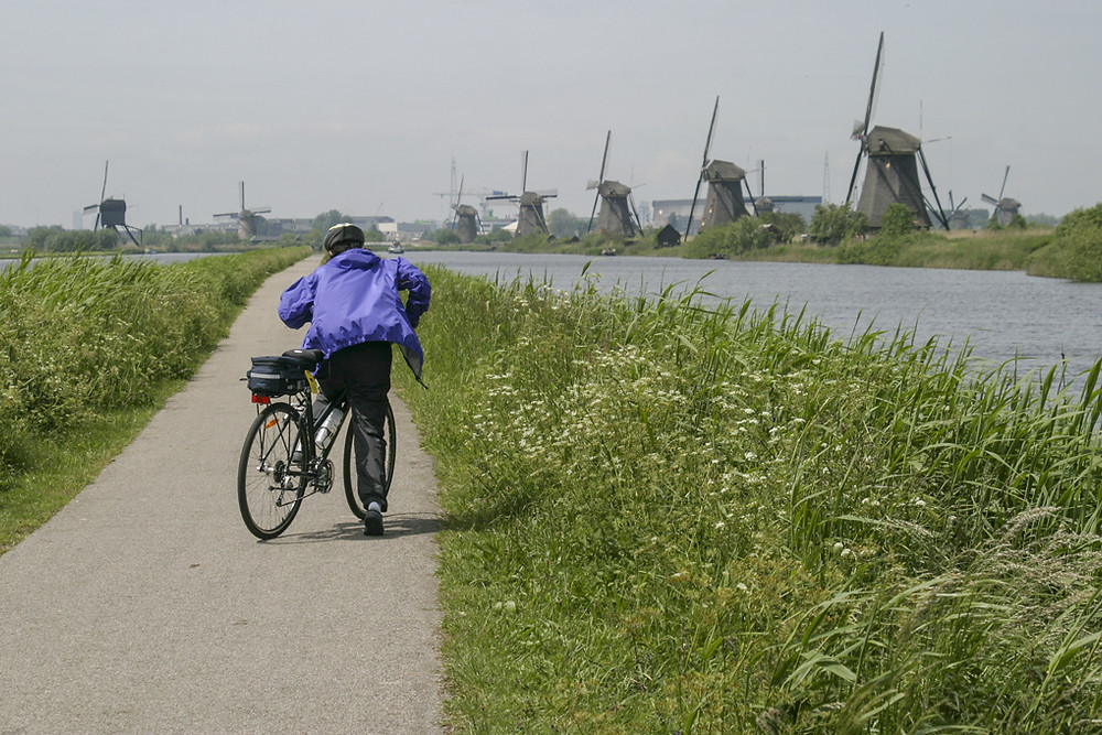 bicycle rider on path along waterway with windmills