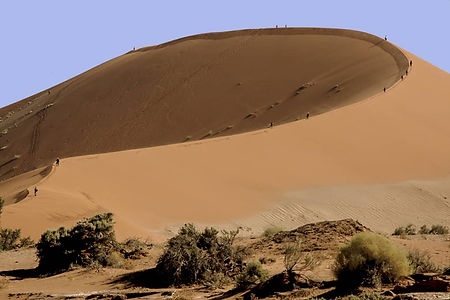 NAMIBIA FLY.jpg