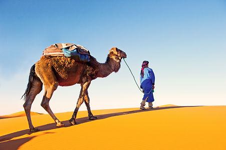 Man leading camel over the desert