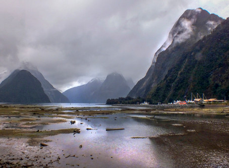 New Zealand Road Trip!