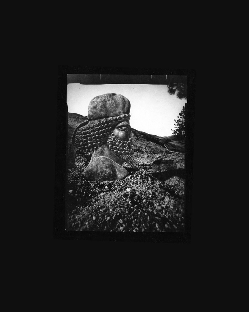 Vanessa Woods A Widespread Place 2020 silver gelatin contact print from pinhole paper negative                                         8 x 10 in.  edition of 8 courtesy of Jack Fischer Gallery
