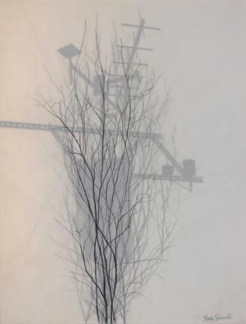 Weather Data & Twigs