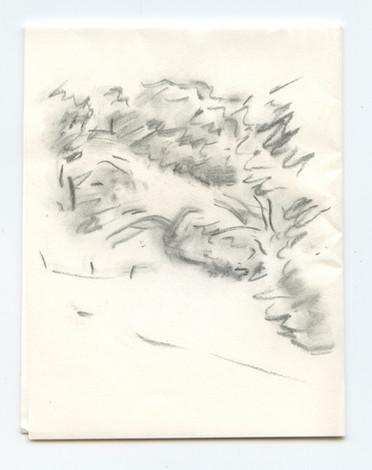 Ukiah Fence Posts, pocket drawing