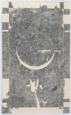 Colter Jacobsen Penumbra (Wild Pacific Iris) 2018 ink on paper 14 x 8 3/4 in. courtesy of Anglim/Trimble, Callicoon Fine Arts, Corvi-Mora