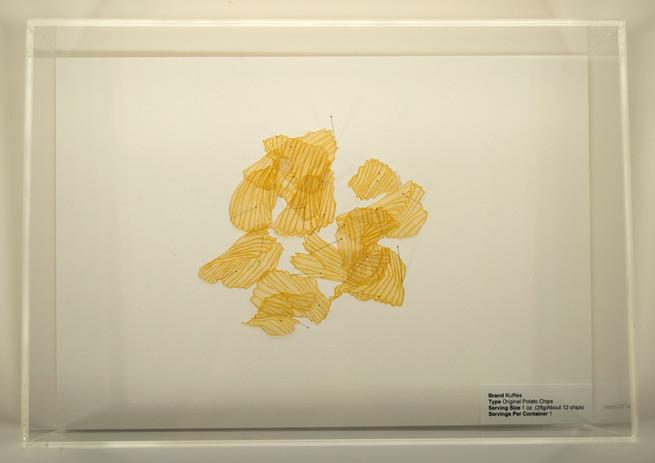 Dora Lisa Rosenbaum Serving Size: Ruffles Specimen 2007  etching, digital print, insect pins, acrylic box, foam core 6 x 17 x 12 in.