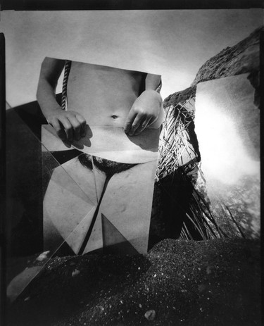 One Shield for Another (after J Cornell's Dream) 2020 silver gelatin contact print from pinhole paper negative                                         8 x 10 in.  edition of 8 courtesy of Jack Fischer Gallery
