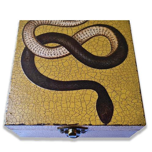 Jo Verity decoupage snake box