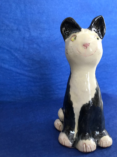 Victor Hugo Black & White kitten