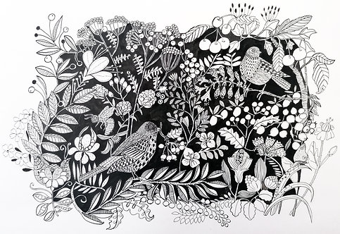 Jeanette McCulloch 'Hedgerow Birds'
