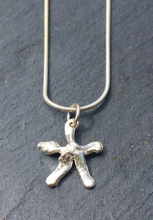 Carol James - Silverfish Starfish pendant