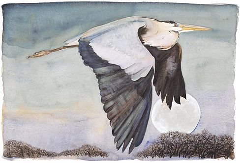 Jackie Morris Limited edition print of The Heron